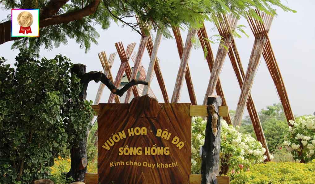 bai-da-song-hong