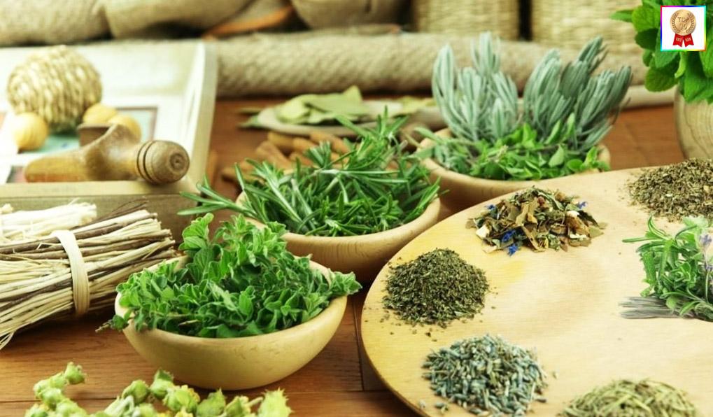 thảo dược thiên nhiên giảm cân