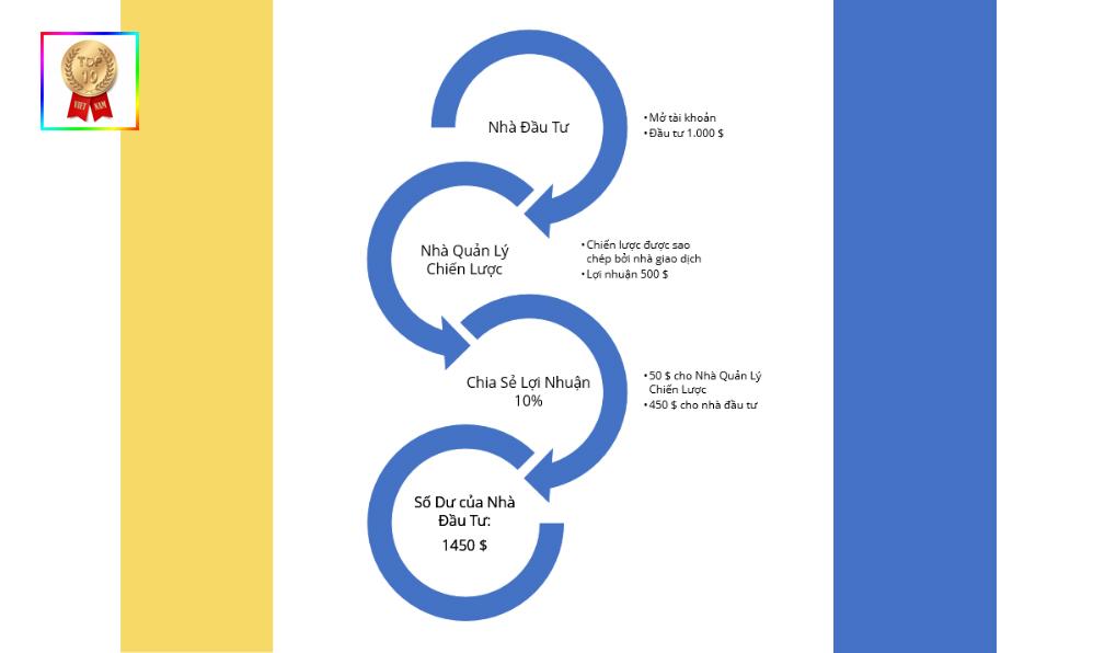 minh họa sao chép giao dịch trên sàn Forex